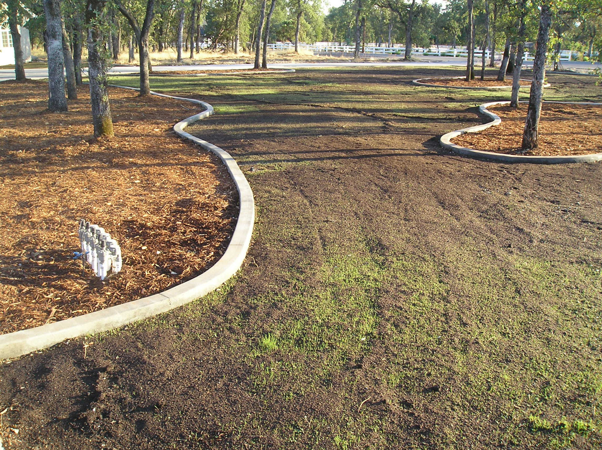 Irrigation and seeding lawns