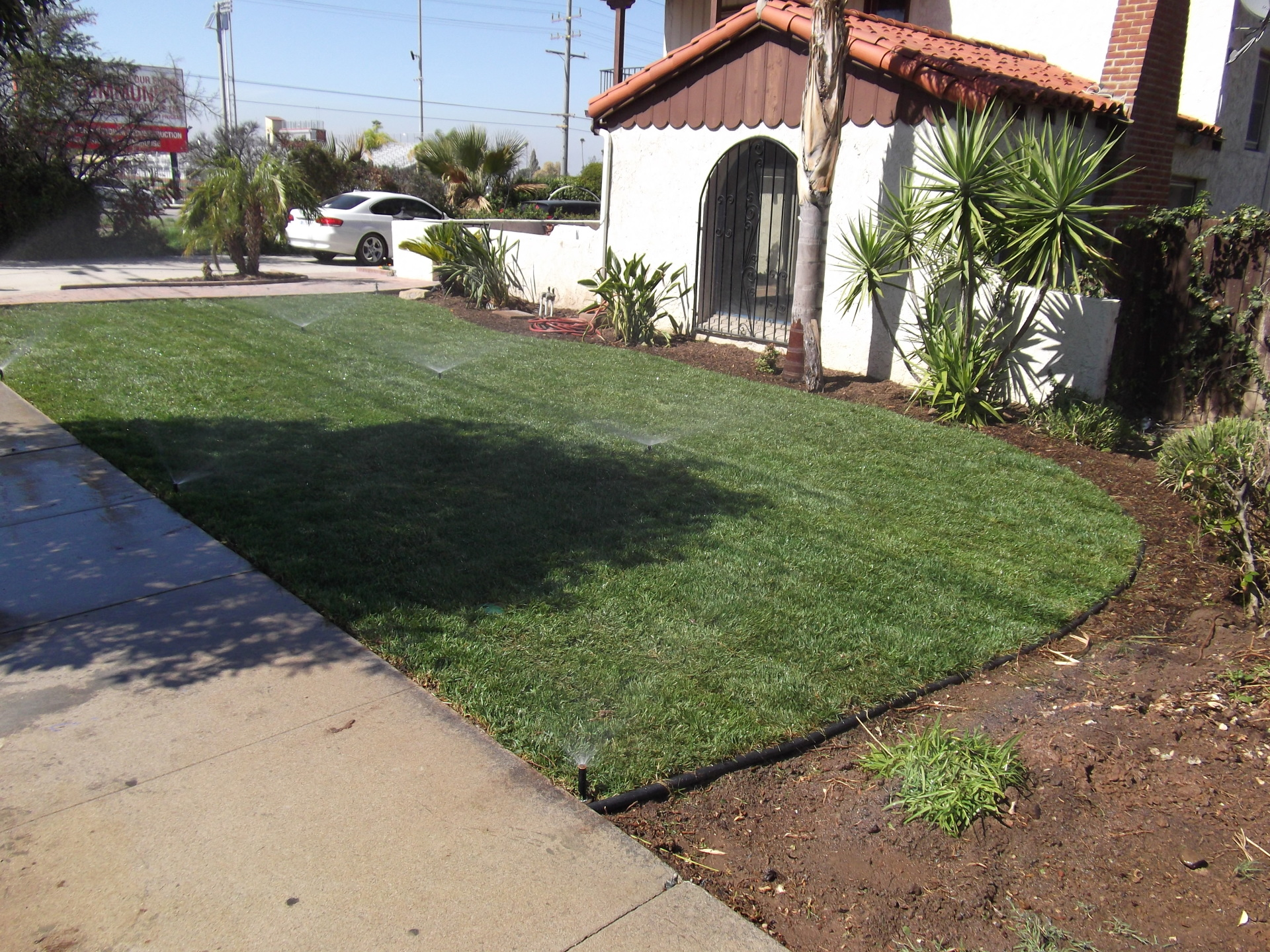 Sod and irrigation- update existing landscape